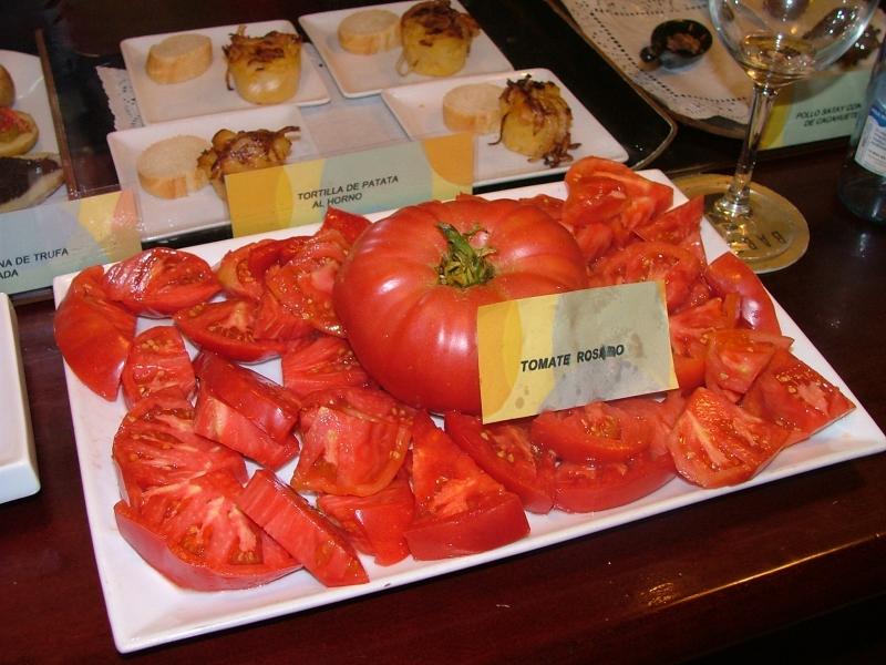 11 Degustacion babel