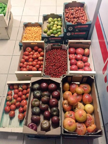 23 Mercado Huerta